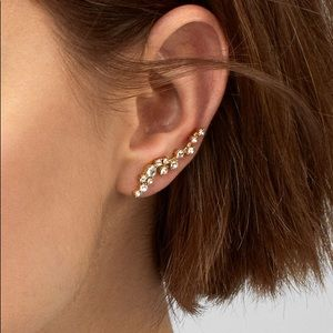BaubleBar Gold Earrings